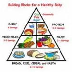 piramida makanan bayi